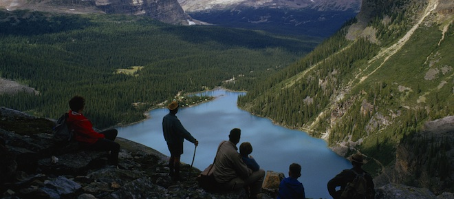 Hikers On Rock Peak Survey Lake O Hara Pine Forests And