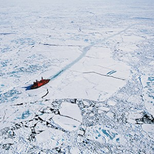 Why the world wants the Arctic