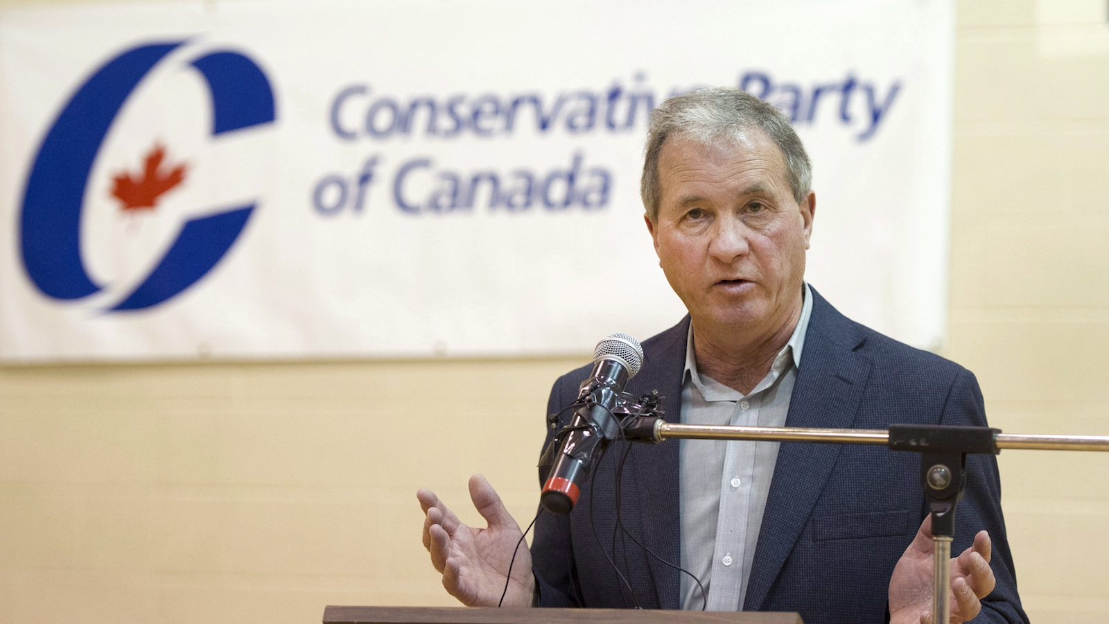 Ron Liepert speaks after defeating Rob Anders during the Calgary Signal Hill federal Conservative nomination on Saturday, April 12, 2014. (Larry MacDougal/CP)