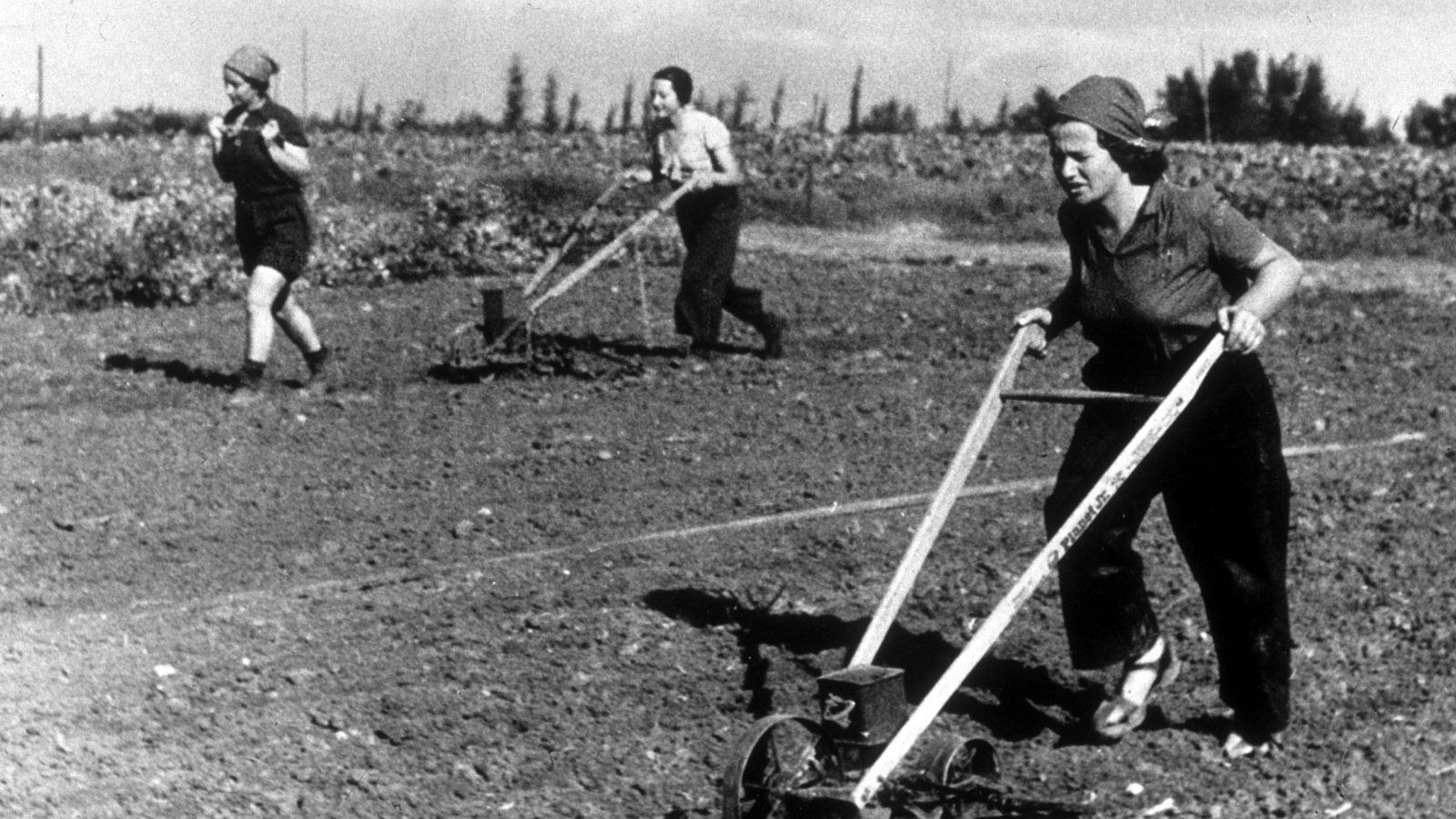 Resultado de imagen para kibbutz
