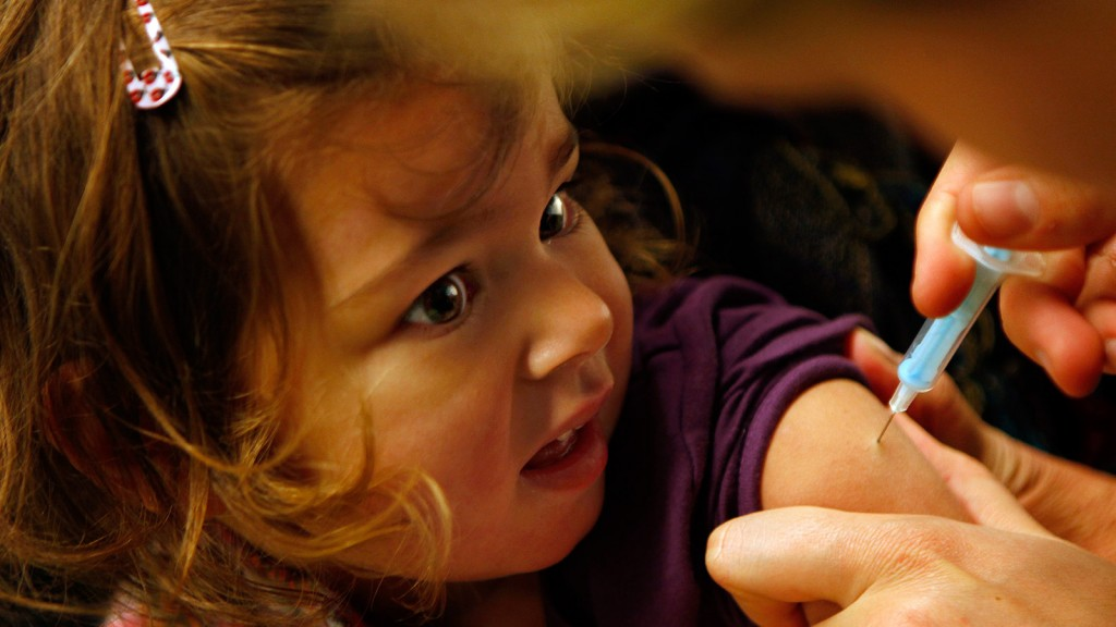 A young child is vaccinated against the H1N1 virus in Schiedam November 23, 2009.  (Jerry Lampen/REUTERS)