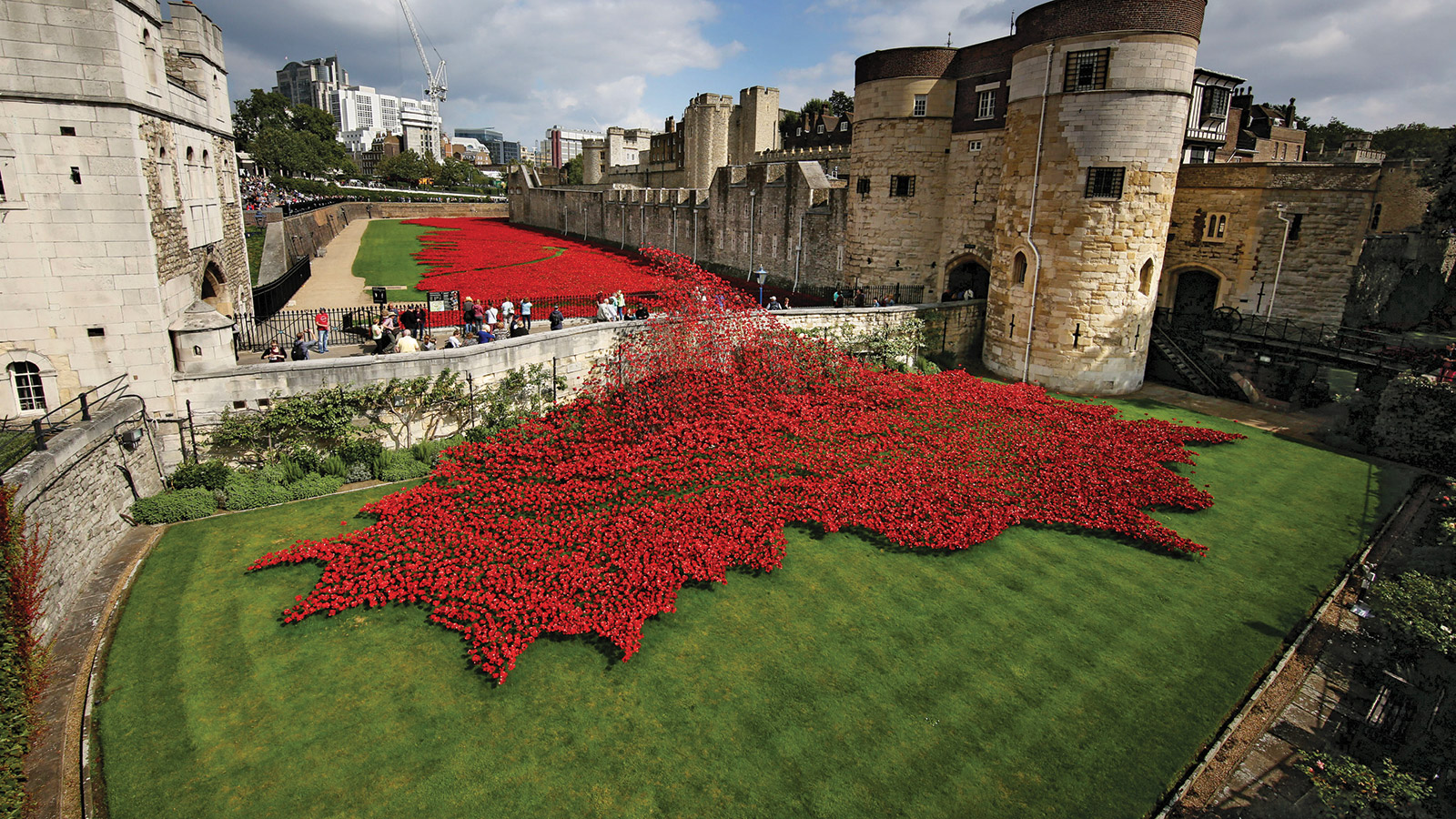 In The Tower The Poppies Flow Inside A Dramatic London Art Project - Tower of london river of poppies