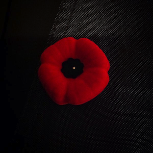 At the War Memorial: Ceremony, rituals and poignancy