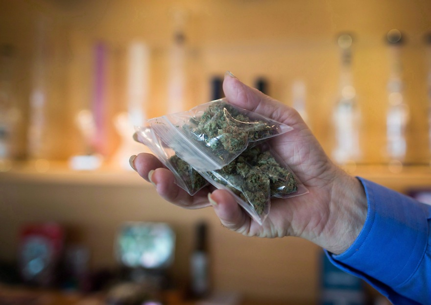 A bag of marijuana is held up at a medical marijuana dispensary in Vancouver on Friday May 1, 2015. The City of Vancouver has become the first in Canada to regulate illegal marijuana dispensaries, despite strong warnings from the federal government. THE CANADIAN PRESS/Darryl Dyck