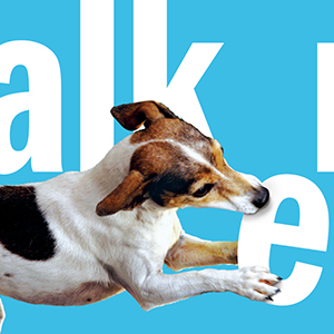 Cover of The Dog Walker for book review MAC39. No credit.