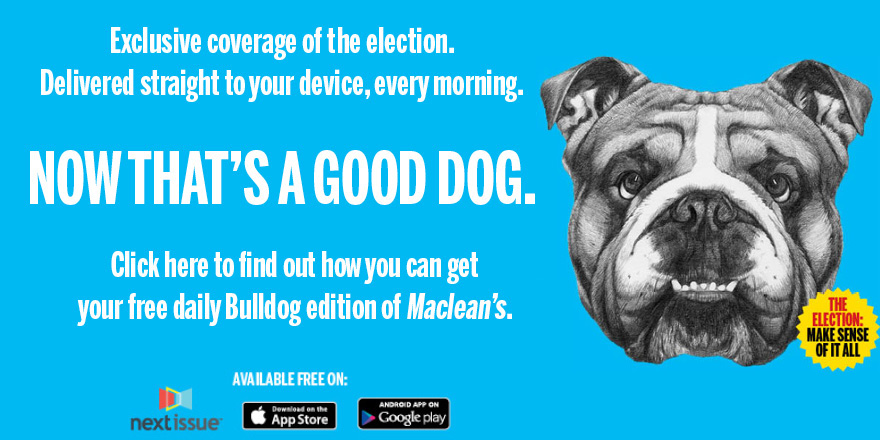 bulldog ad 5
