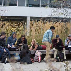 October 2, 2015 - Vancouver:  Students do group work in the Beatty Biodiversity Courtyard during Kai Chan's Environmental Sciences course, ENVR 430: Ecological Dimensions of Sustainability,  at UBC in Vancouver.  (Photograph by Della Rollins)
