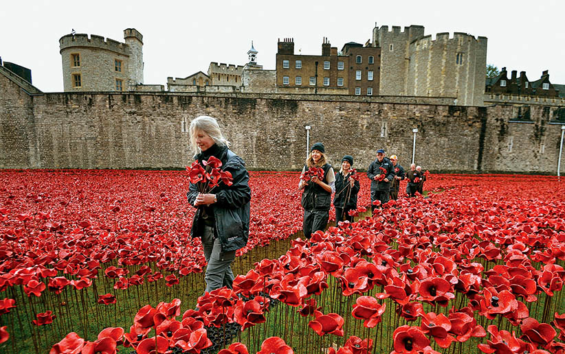 "A group of volunteers remove ceramic poppies as work begins to dismantle the art installation ""Blood Swept Lands and Seas of Red"" at the Tower of London in London November 12, 2014. (John Stillwell/Reuters)"