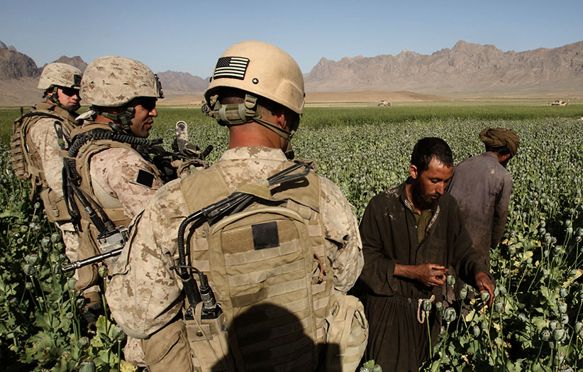 U.S Marines patrol as Afghan men harvest opium in a poppy field in a village in Golestan district of Farah province, May 5, 2009. (Goran Tomasevic/Reuters)
