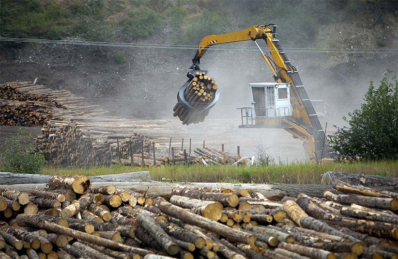 A machine places freshly cut trees into piles before transport to the West Fraser Timber Co. sawmill in Quesnel, British Columbia, Canada, on Thursday, July 11, 2013. West Fraser Timber Co., the largest lumber producer in North America, had a sustainable rise in price, demand volatility, and profits within the past year. (Ben Nelms/Bloomberg/Getty Images)