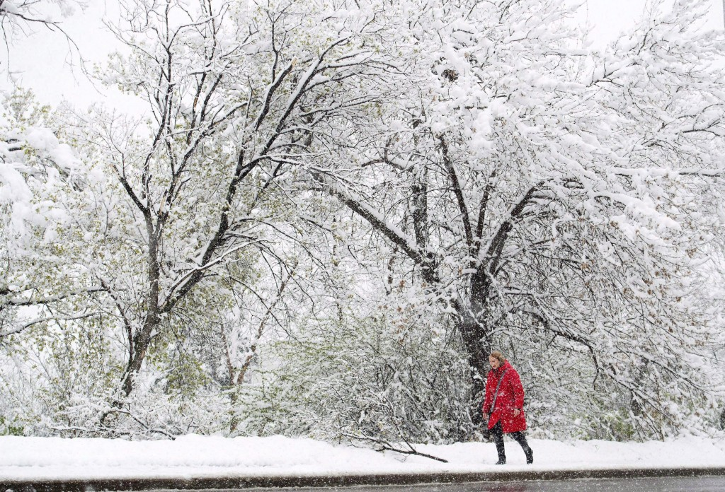 A woman makes her way through a spring snowstorm in Edmonton on Wednesday, May 6, 2015. (Nathan Denette/CP)