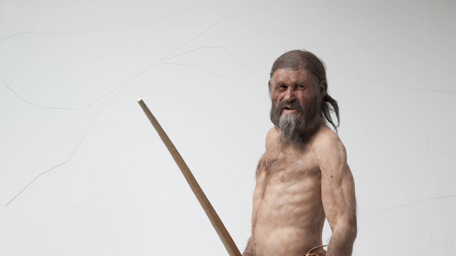 The Iceman's reconstruction.  South Tyrol Museum of Archaeology/A. Ochsenreiter