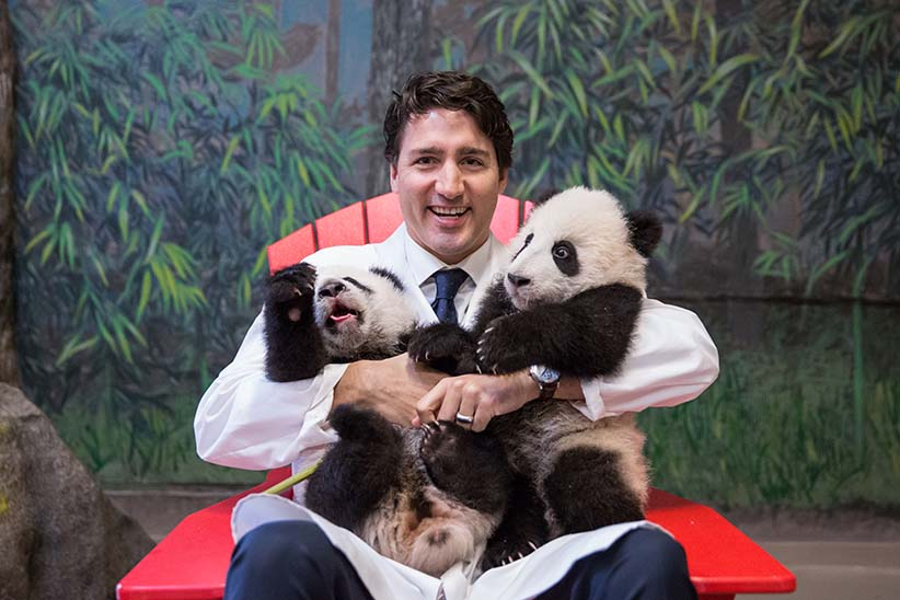 Prime Minister Trudeau meets Canadian Hope and Canadian Joy prior to the panda naming ceremony at the Toronto Zoo. March 7, 2016. (Adam Scotti/PMO)