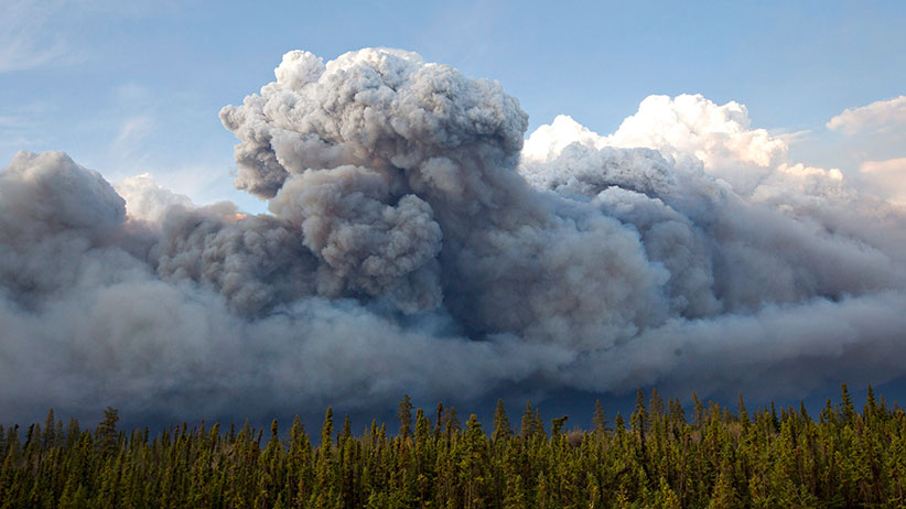 Smoke rises above trees as a wildfire burns in Fort McMurray, Alta., on Wednesday May 4, 2016. The wildfire has already torched 1,600 structures in the evacuated oil hub of Fort McMurray and is poised to renew its attack in another day of scorching heat and strong winds. (Jason Franson/CP)