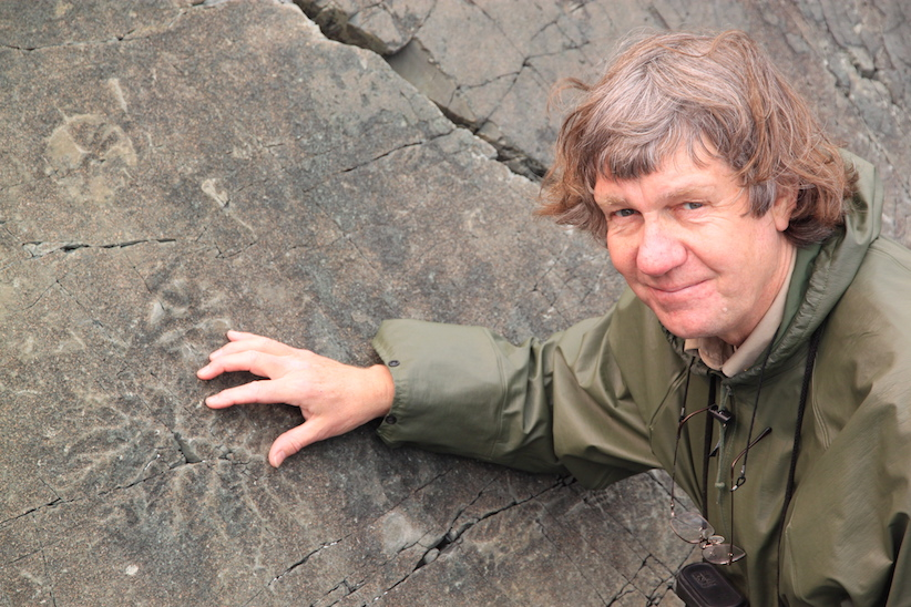 Richard Thomas, who's leading efforts to have the Mistaken Point Ecological Reserve in southeastern N.L. named a UNESCO world heritage site examines outlines of fossils that have been scientifically dated back 565 million years in this handout photo on July 16, 2013. THE CANADIAN PRESS/HO, Mike Wert