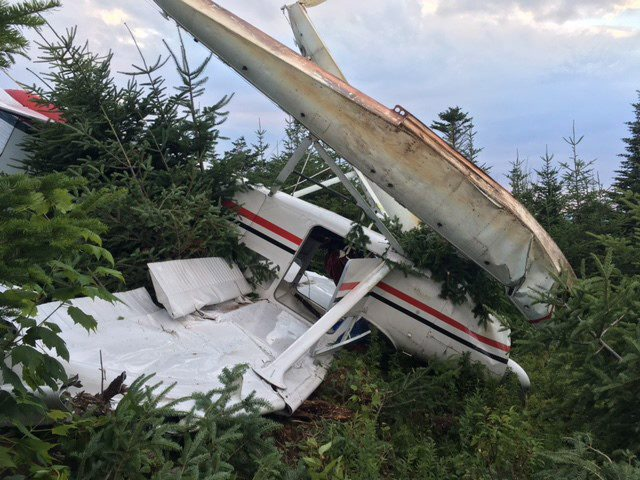 A Cessna 180 plane is shown in this image provided by the RCMP taken on Thursday Aug. 4, 2016 after a crash near Stephenville Crossing, Newfoundland. A Newfoundland man allegedly took a float plane on a joyride, before crashing it into a wooded area. RCMP say the Cessna 180 plane was taken from the Jeffrey's area without the owner's consent. THE CANADIAN PRESS/HO-RCMP MANDATORY CREDIT
