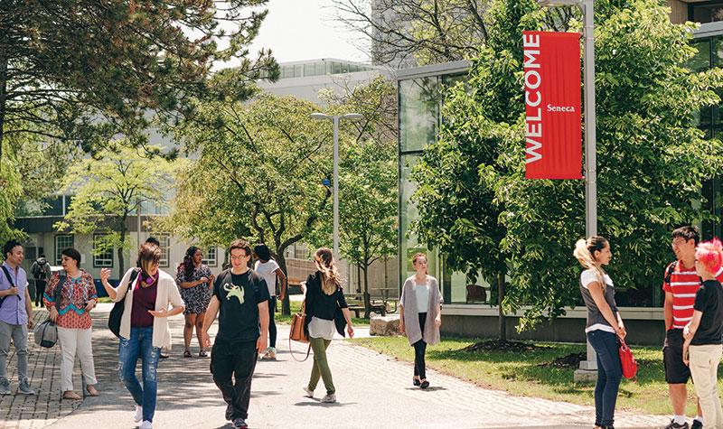Seneca College Tuition And Profile