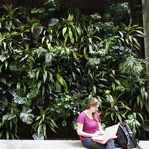 Kaley Fitzsimmons, an Environmental Studies student, takes a seat infront of the Living Wall found in the Environment 3 (EV3) building. (Photograph by Jessica Darmanin)