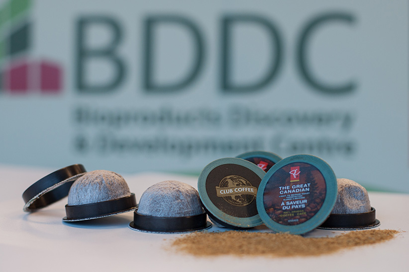 Compostable coffee pods that University of Guelph biomaterials expert Amar Mohanty developed. (University of Guelph)