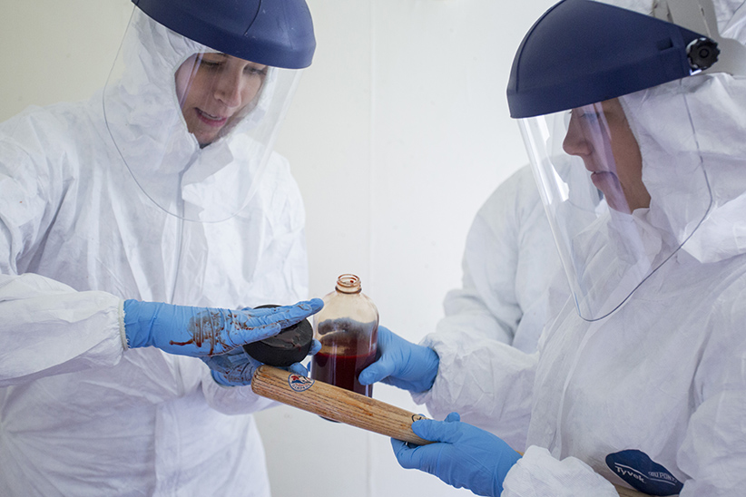 Students at Trent University examine synthetic blood in a fake crime scene. (Photograph by Nick Iwanyshyn)