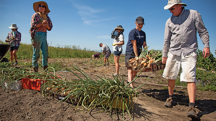 Tsawwassen Farm School is a unique educational program that is a collaboration between Kwantlen Polytechnic University and Tsawwassen First Nation and on TFN land. (Jean-Philippe Marquis)
