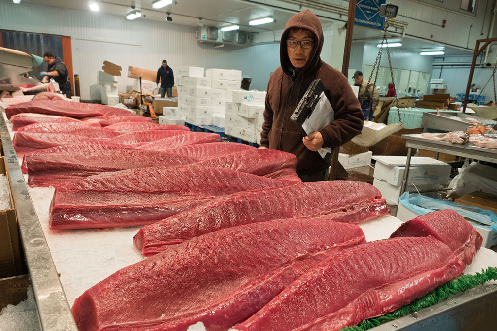 Yellowfin tuna is one of the coveted offerings at Blue Ribbon Fish Co. New York, NY (Zun Lee)