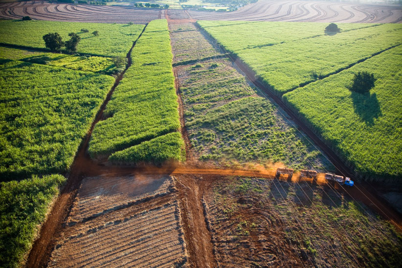 Aerial view of plowed land for sugarcane plantation near Ribeirao Preto in Sao Paulo State, Brazil. (J.R. Ripper/LightRocket/Getty Images)