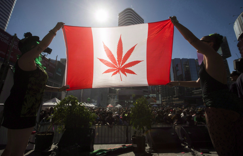marijuana leaf Canadian flag