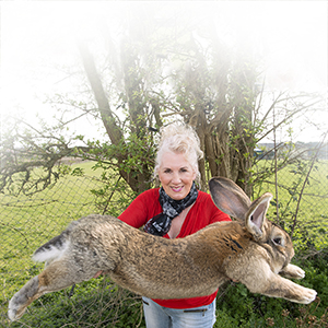 Annette Edwards From Stoulton Worcestershire Who Has A Champion Giant Rabbit Darius And His Son Jeff Who Is Catching Up Fast.  United Airlines is facing another PR disaster after what could have become the world's largest rabbit died yesterday (25 April) on one of their flights. 10-month-old continental giant rabbit Simon, who measured a whopping three foot, died in the cargo hold of a United Airlines Boeing 767 while travelling from Heathrow Airport to Chicago. Simon was expected to grow to be the world's biggest rabbit after his father Darius grew to 4ft 4in (1.32m). (Mcfadden/ANL/REX/Shutterstock/CP)