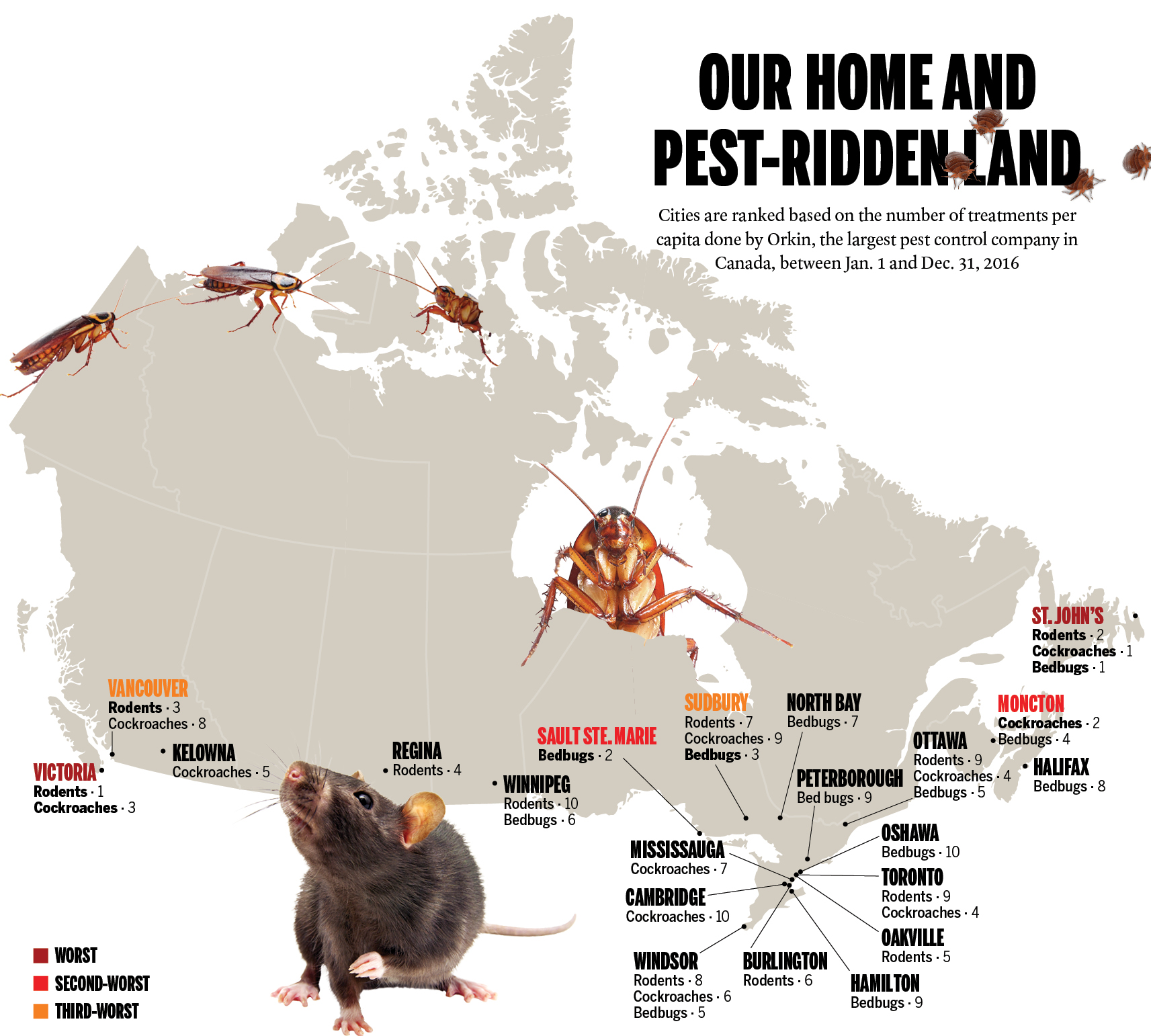 Are Bed Bug Bylaws A Good Idea Macleans Ca