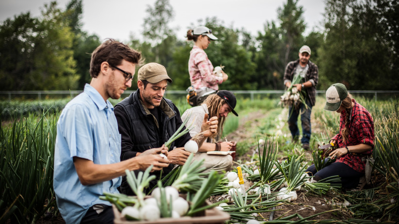 Students on a farm near Victoriaville, Quebec. (exposeimage.com)