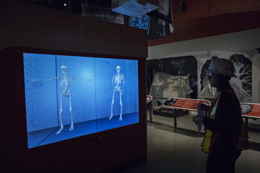 Annie Jacques, Exhibition Interpretation Officer, tests interactive exhibits in the Medical Sensations exhibit at the newly renovated Museum of Science and Technology in Ottawa October 25, 2017. Photograph by Blair Gable Medical Sensations explores the world of medicine through the five senses, and how human and technological sensations shape medical culture. The exhibition showcases medical technologies, past and present, with examples from the Museum's rich medical collection as well as pieces sourced from medical collections across Canada. The central role human senses play in medical practice is examined. The exhibition engages visitors in highly-interactive and sensorial experiences, and prompts them to consider how technological advances have impacted their experience of medical care.