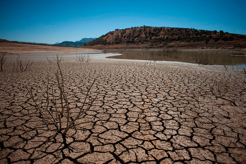 Picture shows the cracked riverbed due to drought in the Guadalteba reservoir, in Los Campillos, on August 9, 2017. (Jorge Guerrero/AFP/Getty Images)