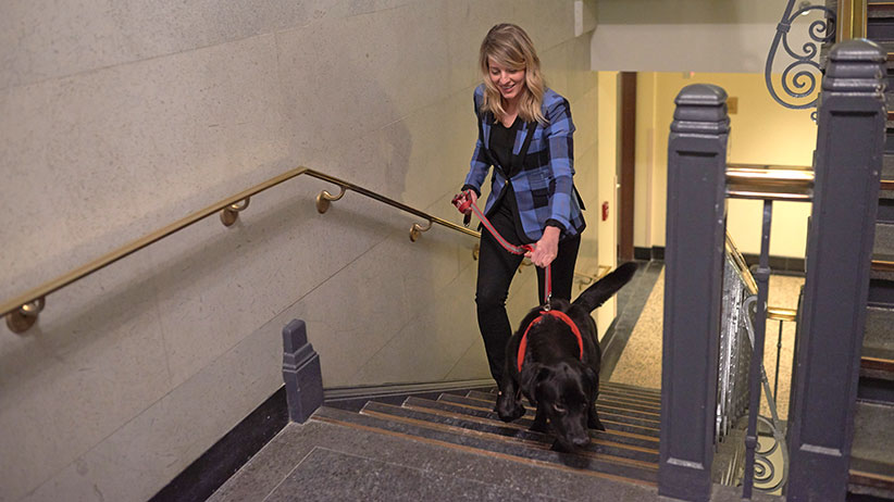 Minister Melanie Joly with her foster dog Naboo at the Justice Building in Ottawa. (Photograph by Jessica Deeks)