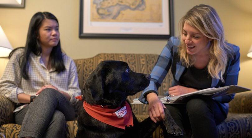 Melanie Joly with foster dog Naboo
