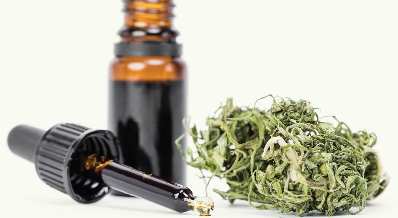 Plant Derivative Drug