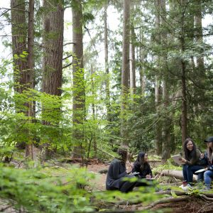 Capilano students chatting in a forest