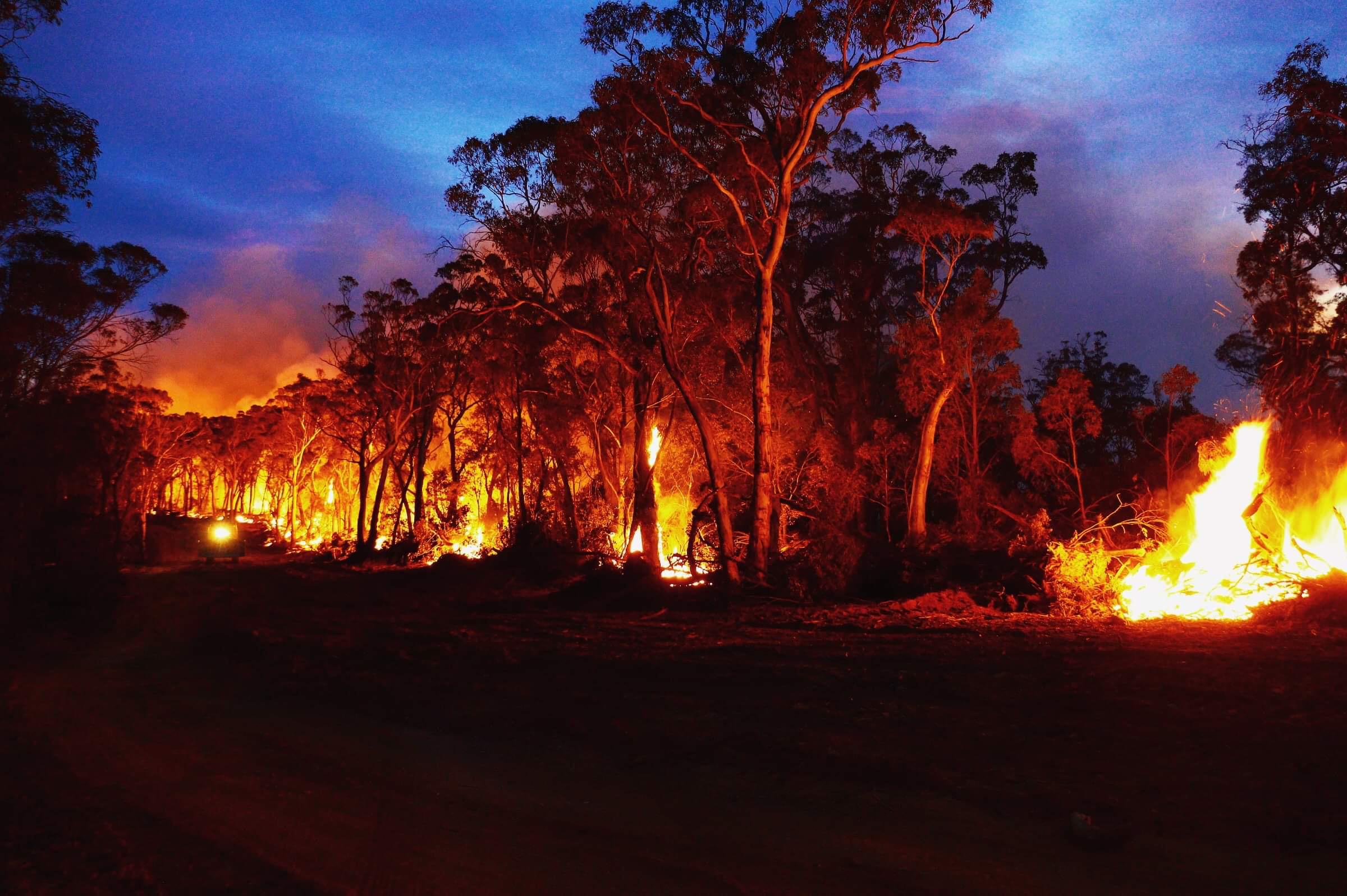 カナダ人はオーストラリアの「メガメガ」山火事の最前線にいます