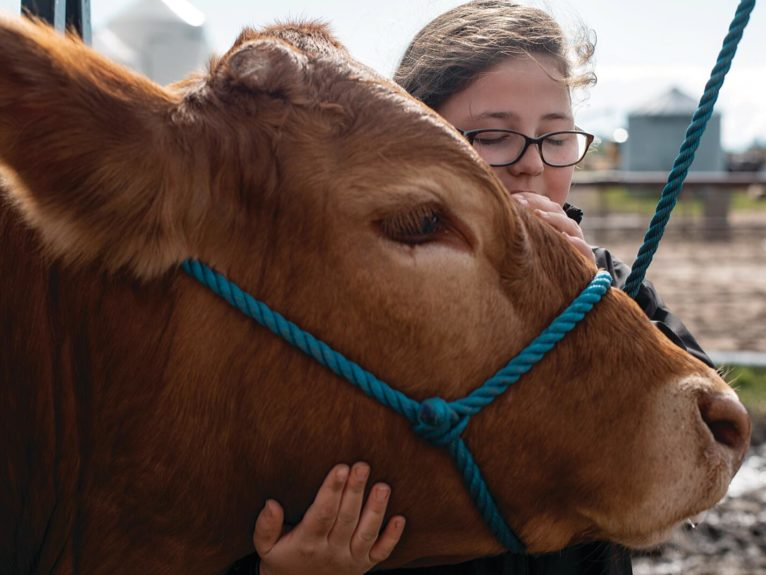 Stone, 10, with her 4-H steer Turbo, on the family farm near Westerose, Alta., in May (Photograph by Amber Bracken)
