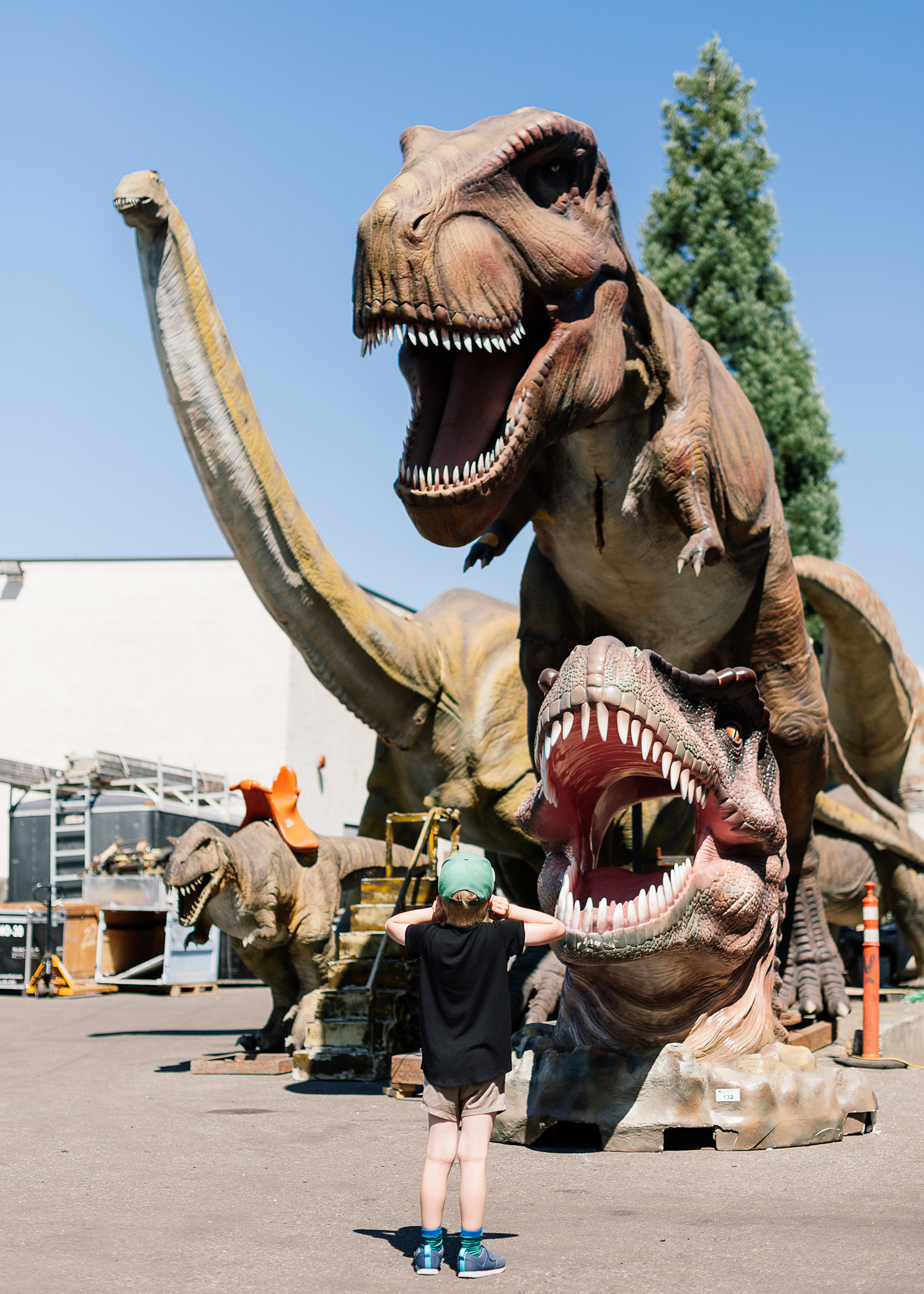 Animatronic dinosaurs on auction at Able Auction house in Langley, BC. (Photograph by Alana Paterson)