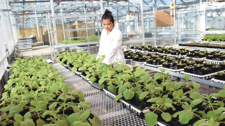 The University of Guelph's Controlled Environment Systems Research Facility (CESRF). (Courtesy of University of Guelph)