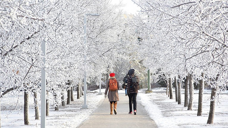 University of Regina students walking a path in the winter