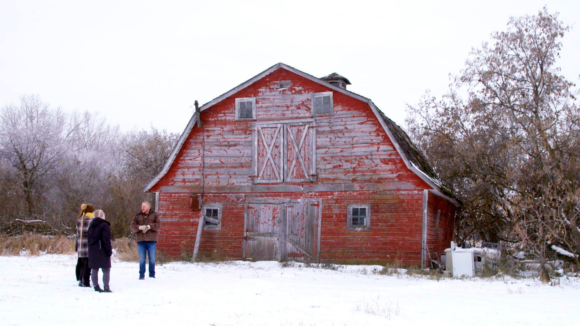 Matthew Almusa's farm (Courtesy of MTV3)